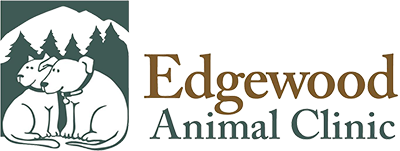 Edgewood Animal Clinic